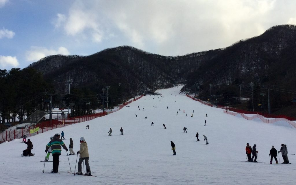 Ski slopes at Jisan Forest Resort